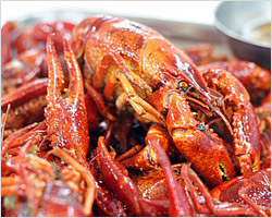 Aromatic and Spicy Crawfish in Shanghai (上海香辣小龙虾)