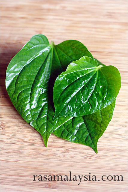 Daun Kadok/La Lot/Wild Betel Leaves