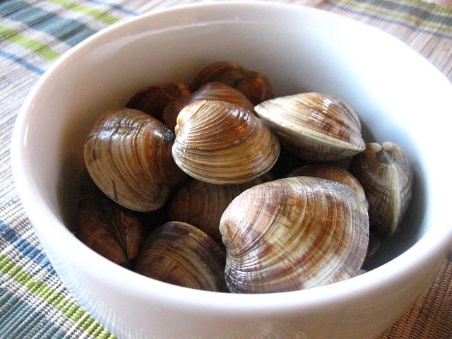 Farmed Necks/Farmed Clams