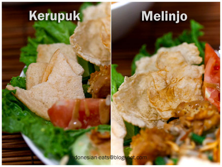 Indonesian Kerupuk and Melinjo