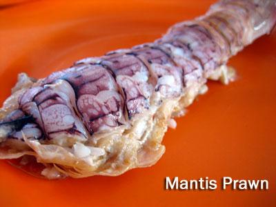 Mantis Prawns, Bukit Tambun