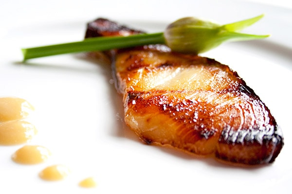 Close up of yummy miso cod, made from black cod, plated and ready to serve.