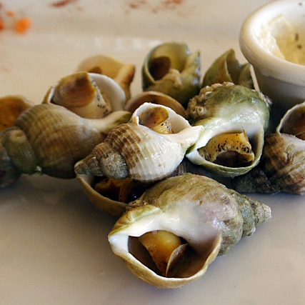 French Snails (Bulots Mayonnaise) Recipe - Served cold with garlic mayonnaise. | rasamalaysia.com