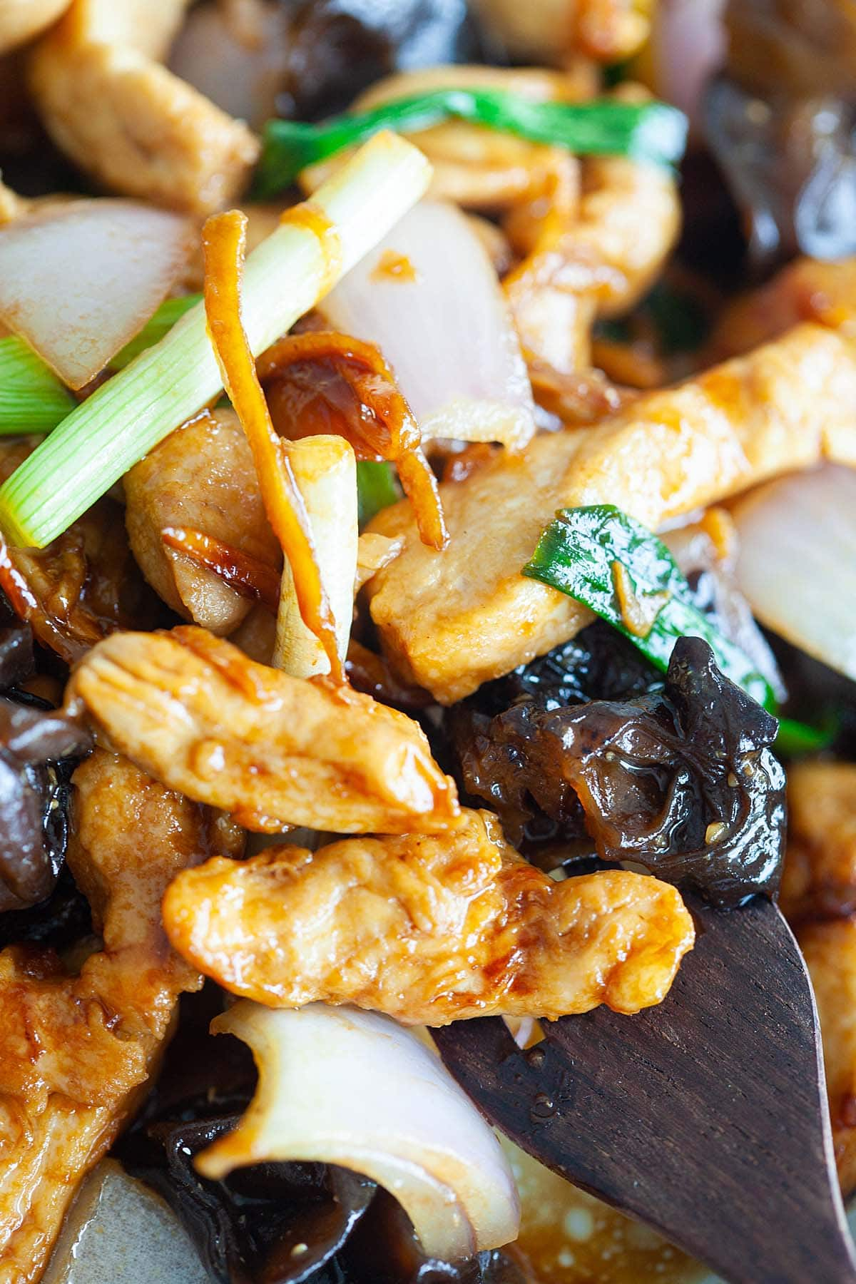 Stir fry chicken with black fungus and ginger, ready to serve.