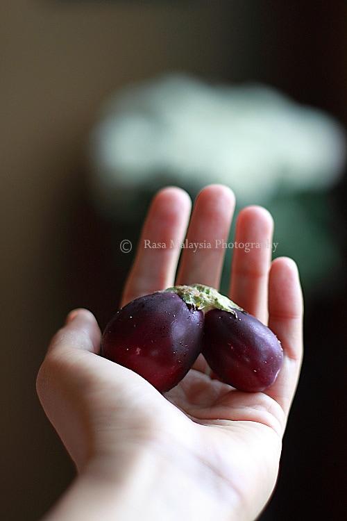 Indian eggplants.