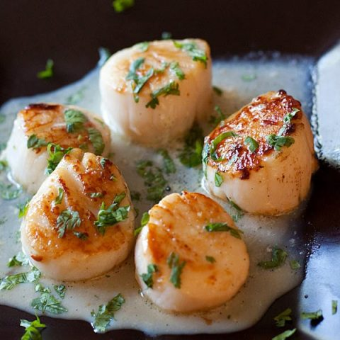 garlic herb seared scallops