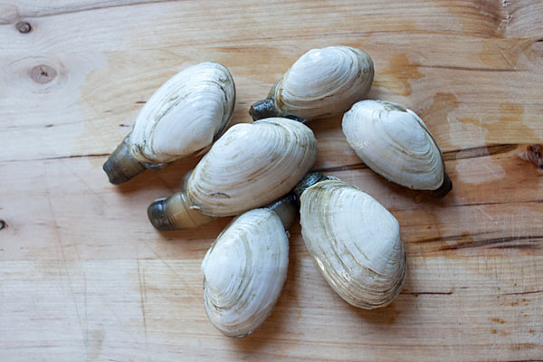 ... Butter Steamers - New England steamers (soft shell clams) with