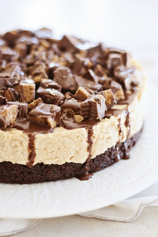 Combination of peanut butter, cheesecake, and brownies cake.