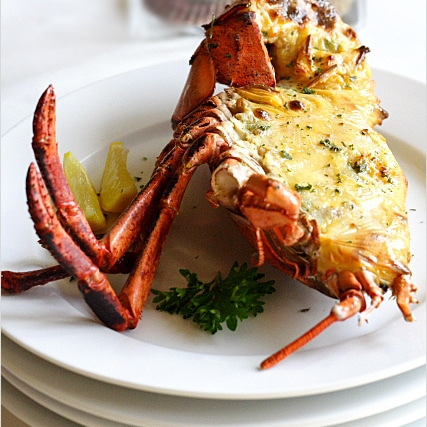 Lobster Recipe: Baked Lobster with Cheese