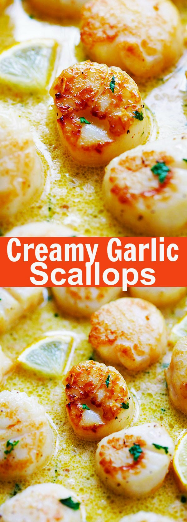 Creamy Garlic Scallops - easiest, creamiest and best scallop recipe ever. Takes only 15 mins, better than restaurants and much cheaper | rasamalaysia.com