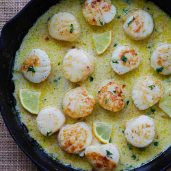 creamy garlic scallops