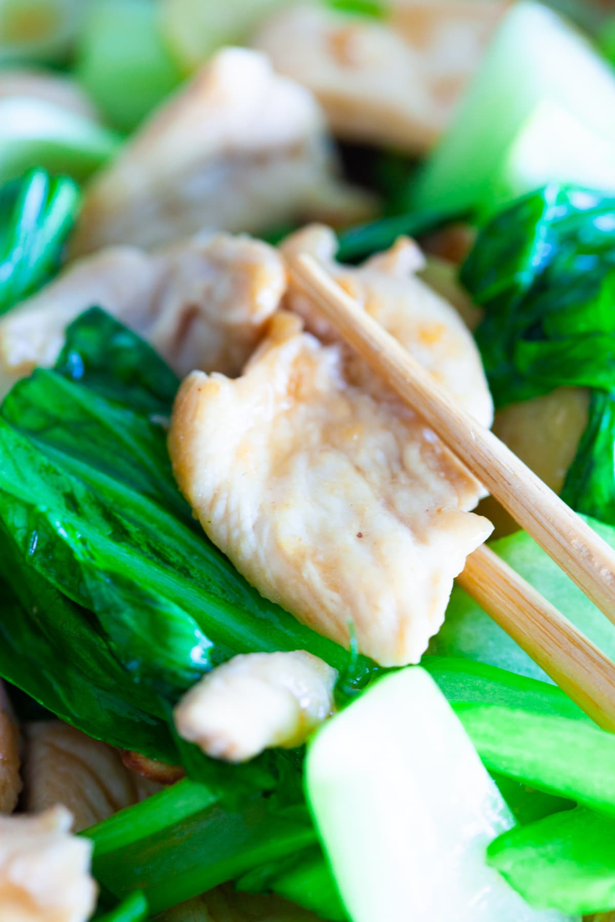 Bok choy chicken, ready to serve.