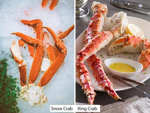 Difference between King Crab Legs and Snow Crab Legs (Snow Crab vs King Crab)