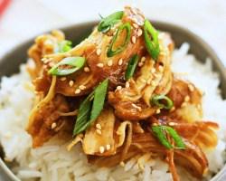 Crock Pot Honey Teriyaki Chicken