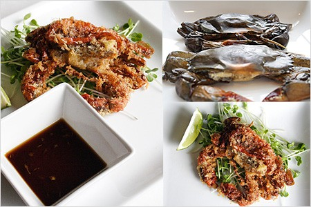 Panko-crusted Soft Shell Crab with Ginger Ponze Sauce